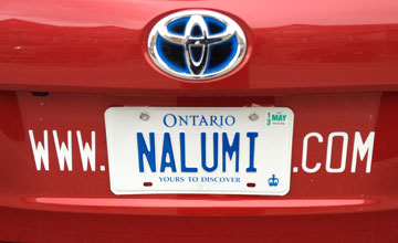 Guerrilla Marketing Ideas: Using Custom Licence Plates + Internet Marketing